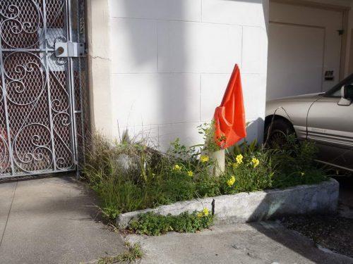 45th Ave Cone