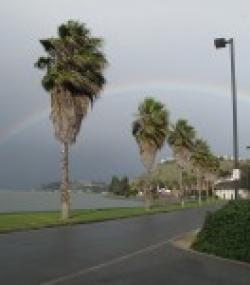 CMA Rainbow 150x150