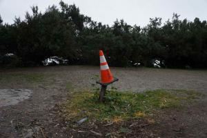 Black Pole Cone
