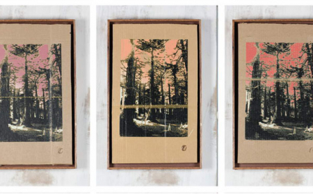 """""""Three Cones in the Park""""   Screenprint on Reclaimed Cardboard   12 x 24 inches each   2012"""