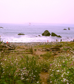 Mile Rock Beach