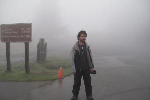 Mt Tam Fog