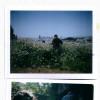 Polaroids Spring 2012