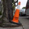Street Light Cone