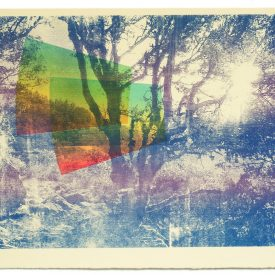 Madrone Screen Print