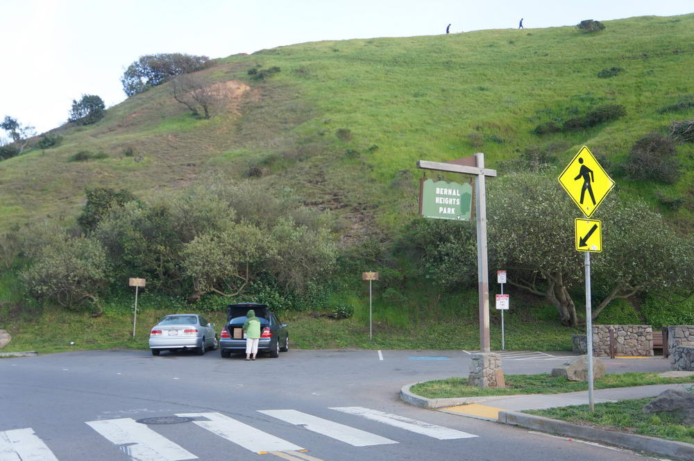 Inspired by SF Parks and Rec signature green signs